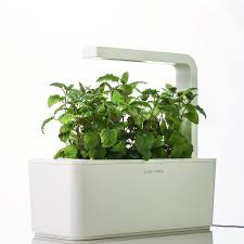 indoor gardening kits vegetables gardening ideas