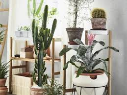 Ikea Krydda Vaxer Usa Product Catalog On Gardenista Shop Our Picks