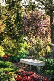 Cairns Botanical Garden by 82 Best Garden Benches Images On Pinterest Garden Benches