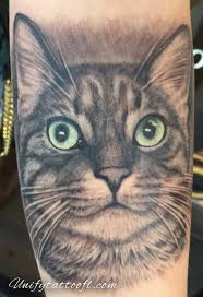 unify company tattoos family memorial cat portrait