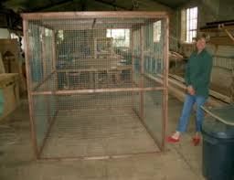 Fox Proof Rabbit Hutches Fox Proof Rabbit Run Protection For Pet Rabbits Out In The Open
