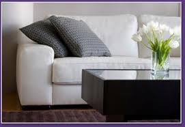 gooses upholstery cleaning folsom furniture upholstery cleaner