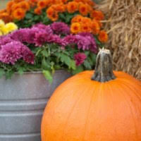Fall Decorating Projects - 90 simple diy fall decor projects