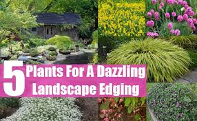 garden design garden design with landscape design with small
