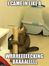 Wrecking Ball Meme - microphone cat wrecking ball imgflip