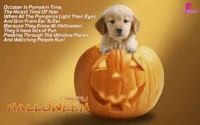 Short Poems About Halloween Operation U201ccrafty Cause For Paws U201d Is Underway How You Can Help Us