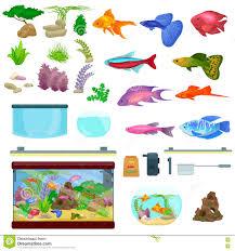 fish tank aquarium with water animals algae corals equipment