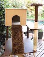 Free Diy Cat Furniture Plans by Free Cat Tree Plans Woodworking Plans And Information At