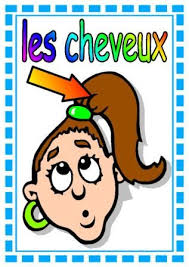15 best french display images on pinterest classroom displays