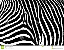 zebra pattern free download zebra pattern large stock vector illustration of wild 9481768