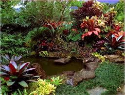 Small Tropical Garden Ideas Tropical Garden With Pond Igreen Tropical Gardens Pinterest