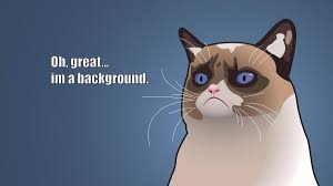 Meme Background - 30 funny meme wallpapers 1920x1080 hd desktop backgrounds