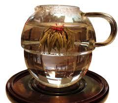 Lotus Flower Tea - tea junction business line