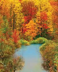 autumn reflection 1500 jigsaw puzzle