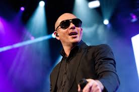 Pitbull Meme Dale - 5 things you ll hear in every pitbull song