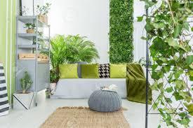 livingroom sofa botanical living room with grey sofa green pillows and bookcase