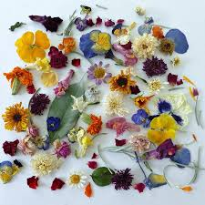 dried flowers real dried flowers wedding confetti confetti flowers dried