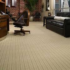 Scotchgard Wool Rug 30 Best Carpet Images On Pinterest Carpet Stair Runners And