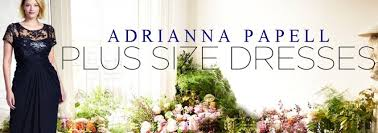 plus size fall winter wedding guest dresses by adrianna papell