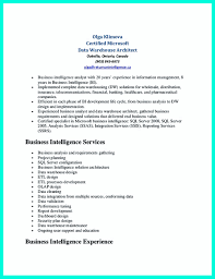 Sample Resume For Solution Architect by In The Data Architect Resume One Must Describe The Professional