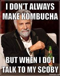 Dos Equis Man Meme Generator - 37 best fermented funnies images on pinterest ha ha funny stuff