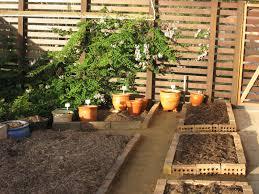 Organic Vegetable Gardening Annette Mcfarlane by Missy U0027s Garden Growing Herbs In The Sub Tropics