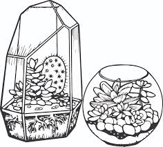 cactus and succulent printable coloring pages