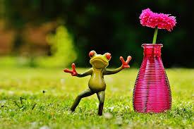 Frog Flower Vase Free Photo Frog Gesture Peace Vase Flower Free Image On