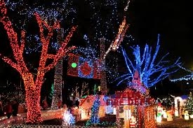 holiday traditions bright nights in stanley park vancouver mom