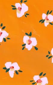 Pretty Orange Tangerine Pink Green Colors Pinterest Orange