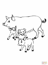 trend coloring pages of pigs kids design galle 8030 unknown