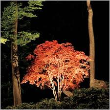 Landscape Lighting Plano Landscape Lighting Resources Modern Looks Landscape Lighting