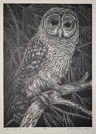 vintage owl illustrations in the public domain free vintage