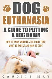put dog to sleep dog euthanasia a guide to putting a dog how to when it