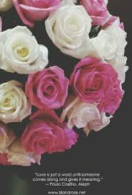 send roses how to send roses dentonjazz dentonjazz