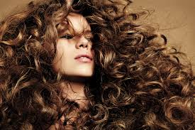 top hair salons twin cities best hair salons in the us 100 best hair salons by state