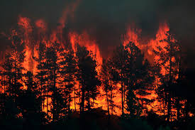 Wildfire Colorado News by Fires Are Torching Montana And The Money Is Running Out Montana
