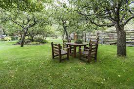 Tree Ideas For Backyard 24 Delicious Backyard Fruit Tree Ideas