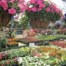 Landscaping Peachtree City Ga by Pike Nurseries Nurseries U0026 Gardening 103 Highway 74 South