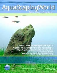 Aquascaping World Aquascaping World By Fishmashup Issuu