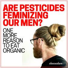 feminizeing hair are pesticides feminizing our men