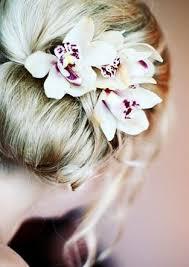 hair corsage orchid hair corsage snowbird robin flickr