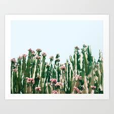 blush cactus society6 decor buyart print by 83oranges