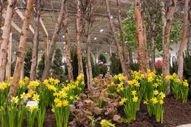 canada blooms the toronto flower and garden festival tourism