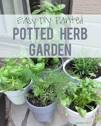 Urban Herb Garden Ideas - best 25 potted herb gardens ideas on pinterest herb pots patio