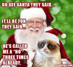 Funny Christmas Cat Memes - funny grumpy cat meme christmas funny cat pictures