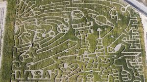 thanksgiving point boasts nasa sponsored corn maze ksl
