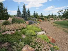 Images Of Rock Gardens Gardens On Creek Rock Garden Alpine Xeric Low Water
