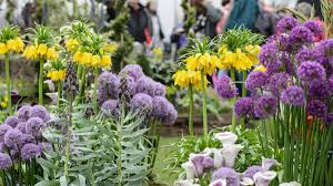 all about the rhs flower show cardiff 2017 rhs gardening