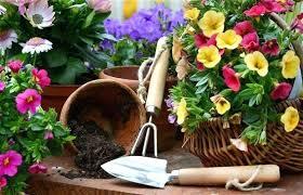 Gardening Zones - gardening u2013 exhort me